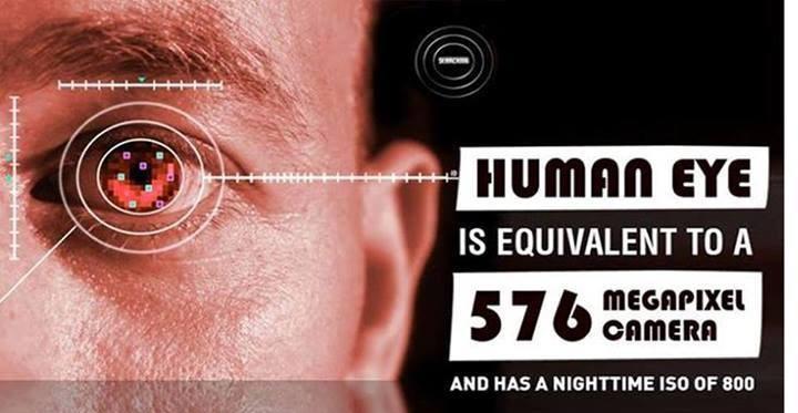 human-eye-mp