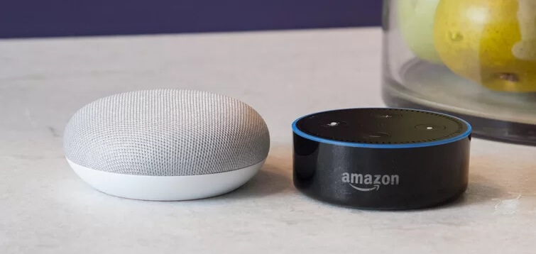 google home mini alexa dot side by side