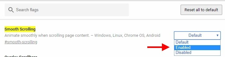 chrome 8 flags speed useful