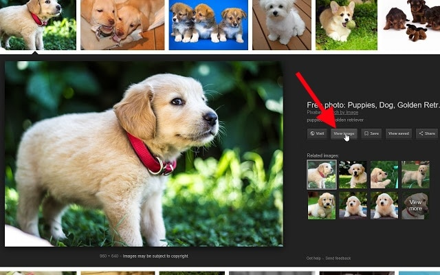 google missing view image fix