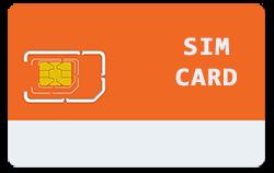 standrad-SIM-card
